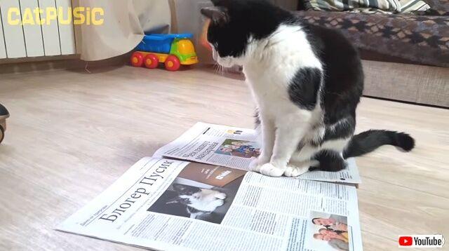 newspaper0_640