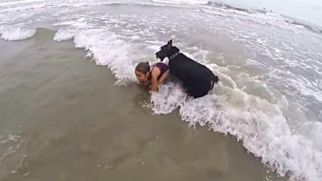 beachdogngirl5