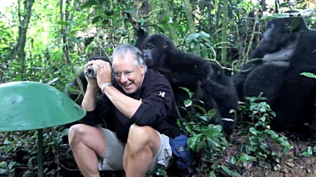 gorillafamily3