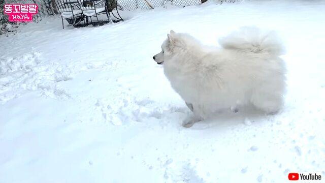 snowfield1_640