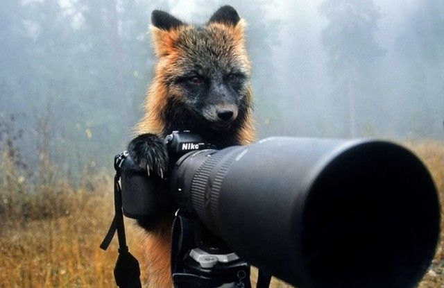 photographers18_e