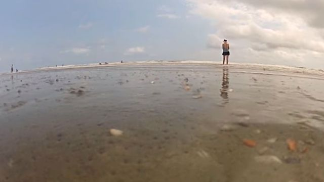 beachclam3
