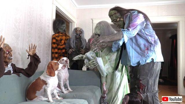zombie6_640