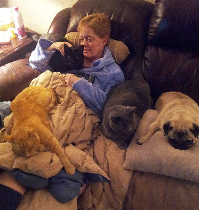 living-with-multiple-pets-user-submissions-4