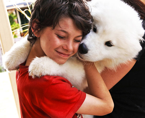 cute-dogs-hugging-humans4