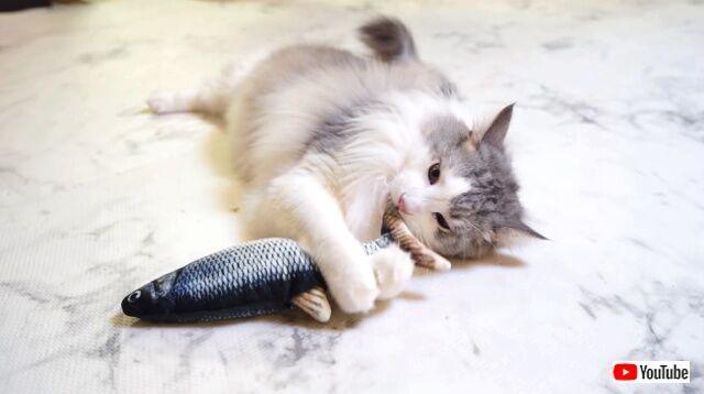fishhunting4_640