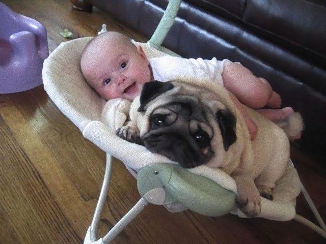 cute-kids-dogs-best-friends-friendship-150-5a99009fb9f87__605_e