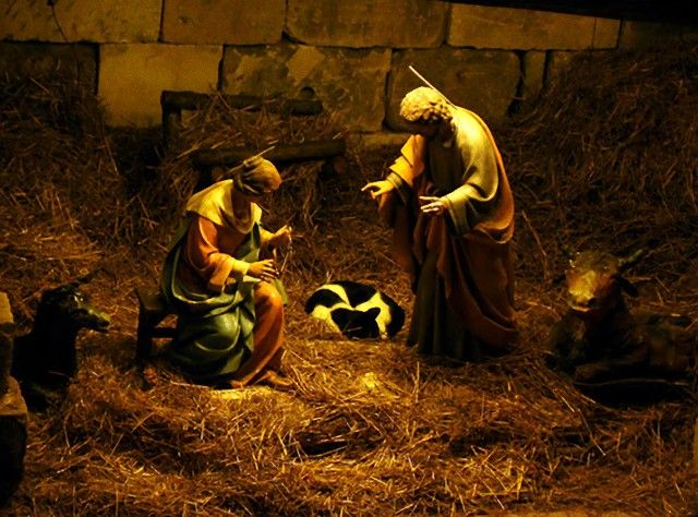 cats-crashing-nativity-scenes-132-5a27e4c6e8ac2__605_e