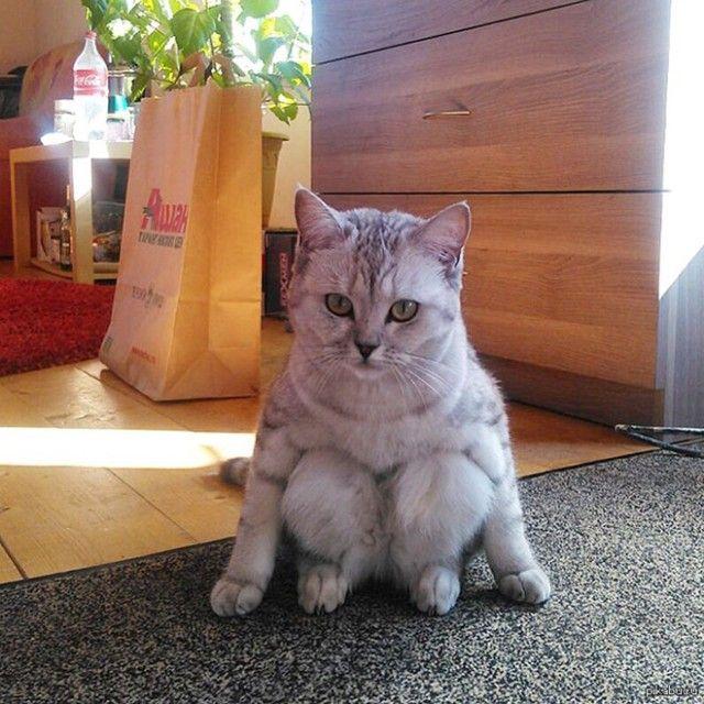 sitting9_e