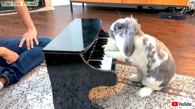 piano0_640