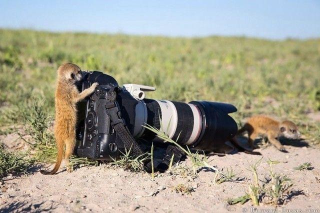 photographers5_e