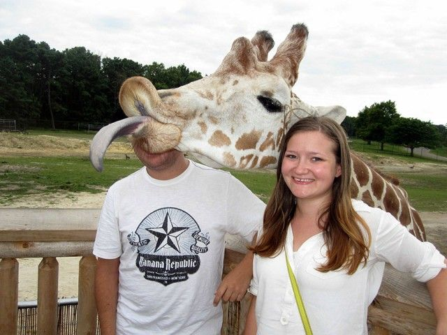 funny-animal-photobombs-9__880_e