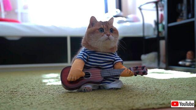 guitar2_640
