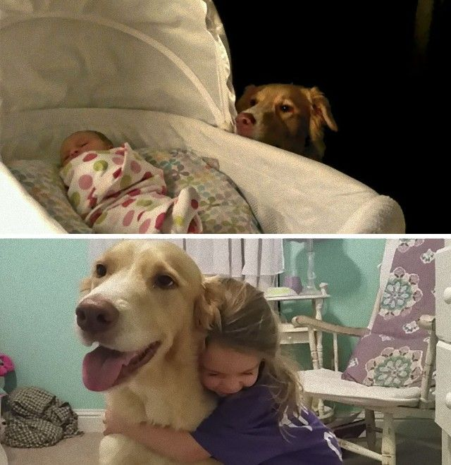 cute-kids-dogs-best-friends-friendship-155-5a991362de464__605_e