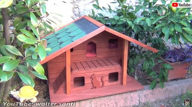 catshouse5_640