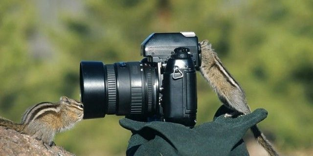 photographers16_e