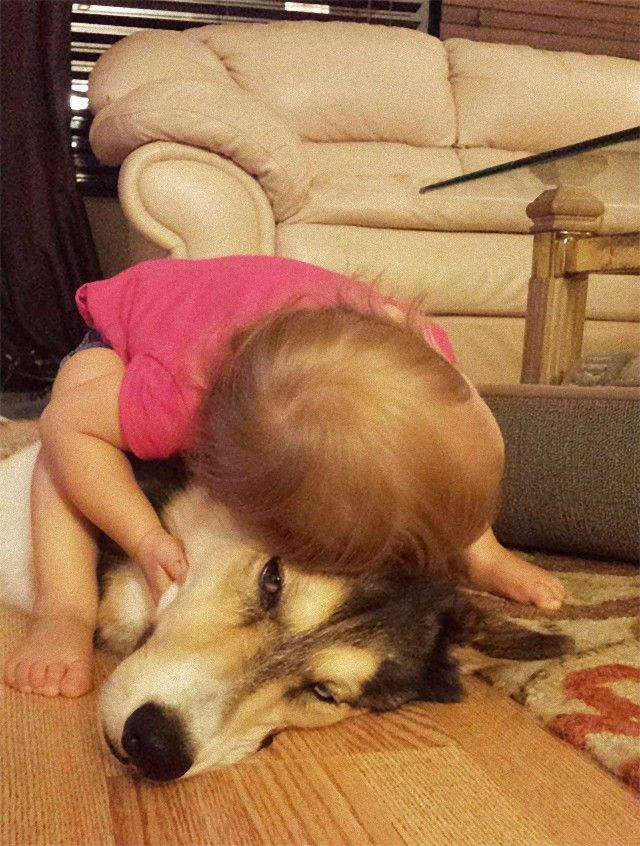 cute-kids-dogs-best-friends-friendship-13-5a97fa5dacbc3__605_e