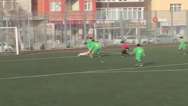 footballdog13_e
