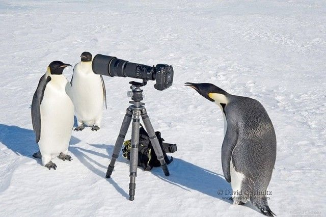 photographers19_e