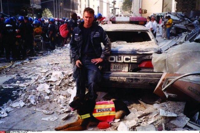 911dogs2_e
