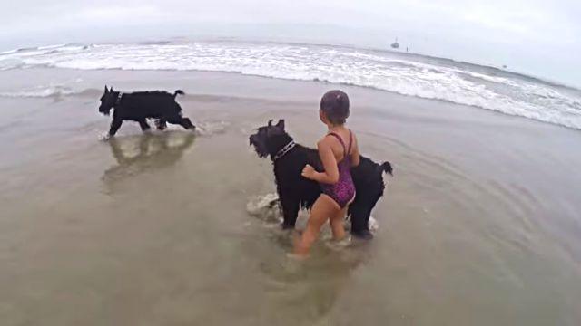 beachdogngirl2