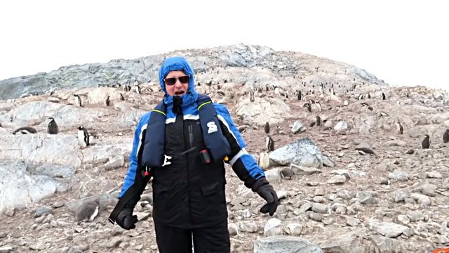 penguinshateopera1
