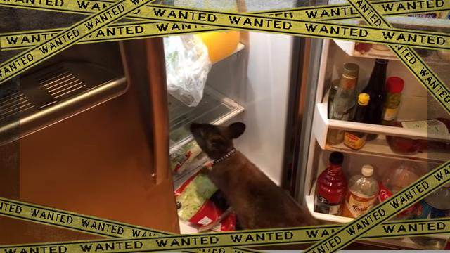waraby [www-frame