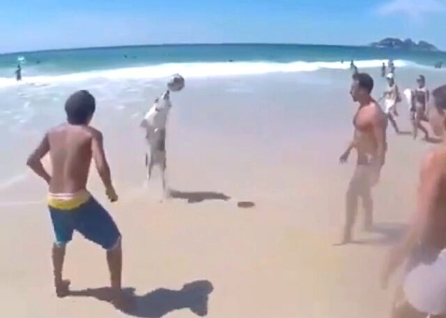 beach2_640