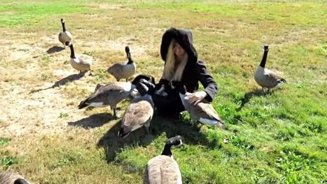 goslings8