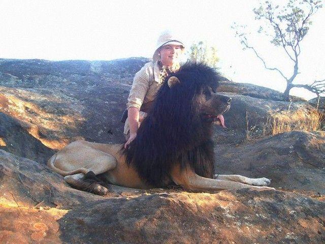 Lion_e