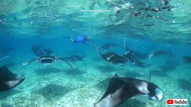 maldives2_640