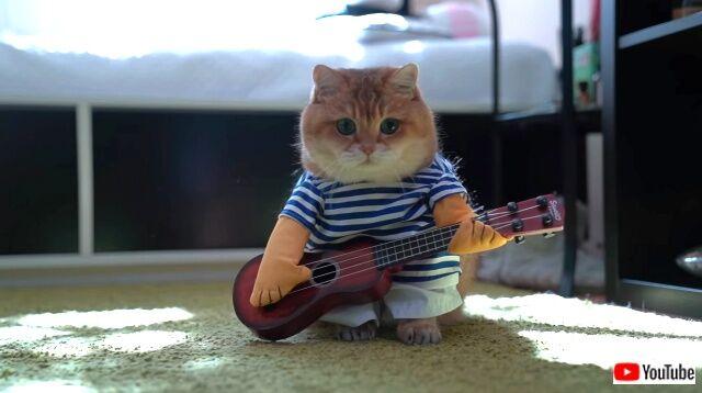 guitar3_640