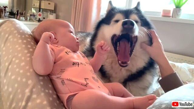 maternitymornings5_640