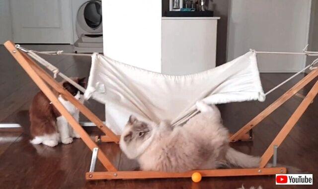 hammock5_640