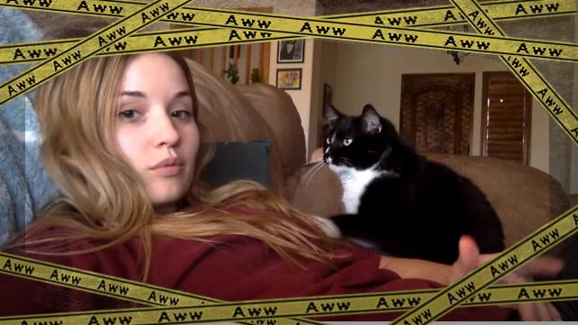 cat-f [www-frame