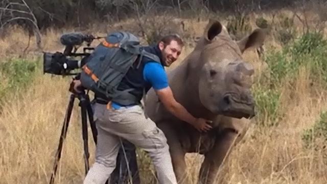 rhino-2_e