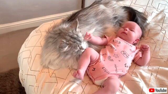 maternitymornings7_640