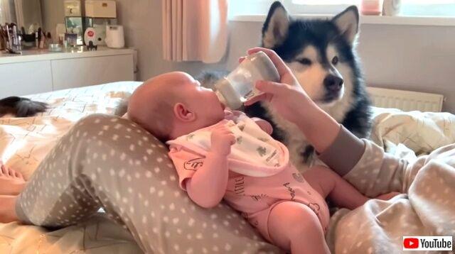 maternitymornings1_640