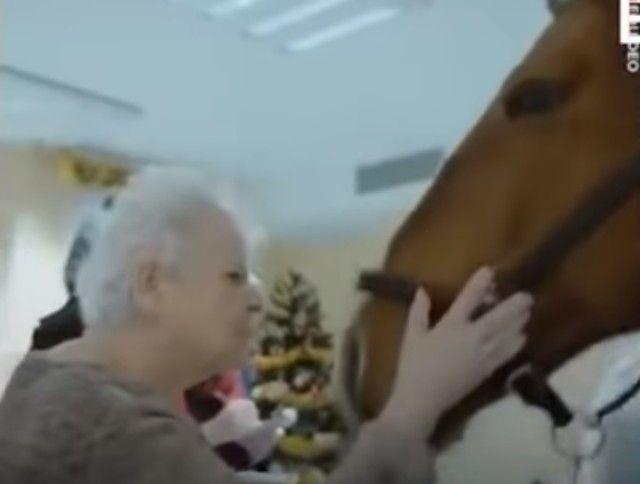 horsetherapy4_e