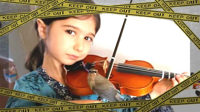 violin1-frame