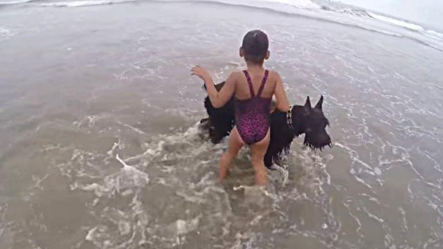 beachdogngirl4