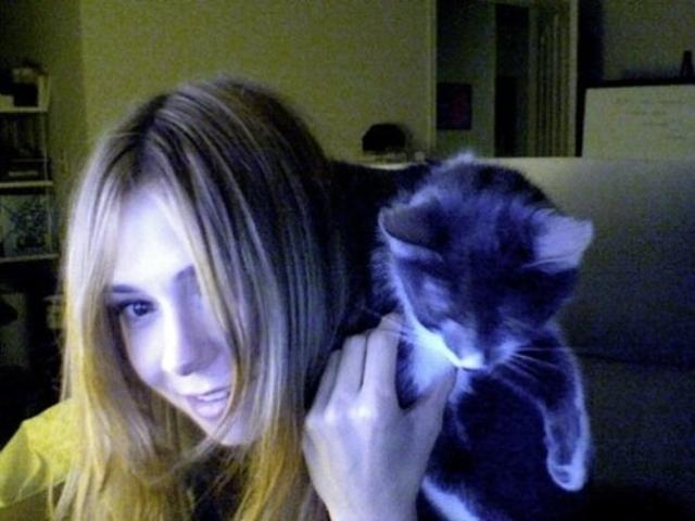 cats11ok