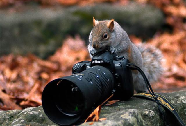 photographers22_e