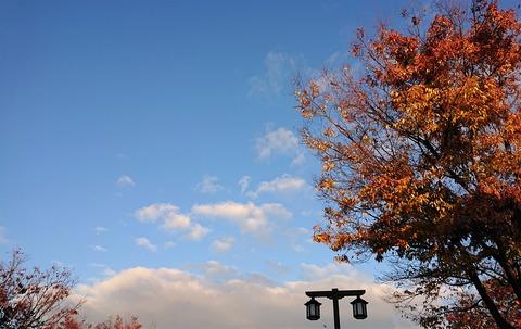 11月中旬の空