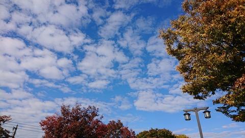 11月の空①