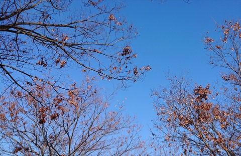 12月末の空