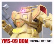 YMS-09DOM