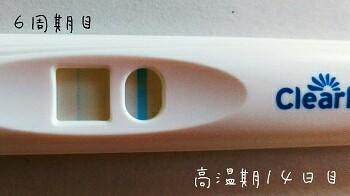フライング 高温期14日目