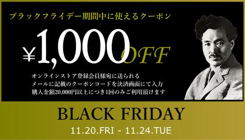 BlackFridayCoupon20112024_001