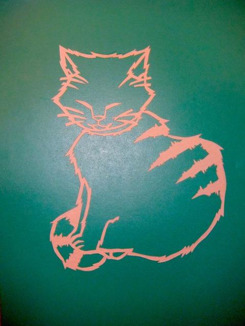 猫(小)2